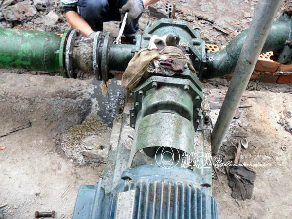 供应排污泵生产厂家/上海灰浆泵厂家电话/上海粘稠污泥泵大量批发