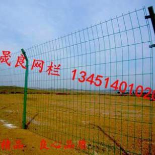 大型养猪场外围隔离防护钢丝护栏网图片