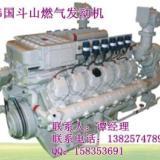 供应300KW以下斗山燃气发电机组