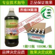 猪饲料发酵剂图片