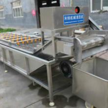 葡萄干清洗机、葡萄干清洗机厂家、葡萄干去石机,葡萄干清洗机价格