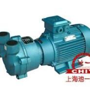 2BV水环式真空泵图片
