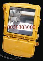 供应BFC8110-HN防爆强光泛光灯