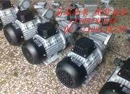 广州模温机油泵图片
