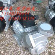 元新YS-15C导热油泵图片