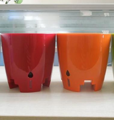 花里巴巴工位固定花盆懒人塑料花盆图片/花里巴巴工位固定花盆懒人塑料花盆样板图 (1)