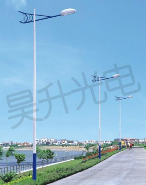 保定定兴村庄亮化工程厂家太阳能路灯太阳能庭院灯路灯图片