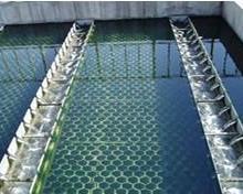 供应国标环保杀菌灭藻剂价格表,廊坊杀菌灭藻剂批发厂家,廊坊杀菌灭藻剂报价批发