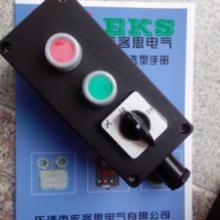 大量供应三防全塑主令控制器(按钮盒)型号:FZX-B1-B2-B3