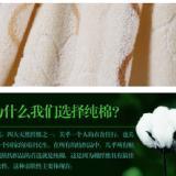 供应毛巾被出口厂家直销/毛巾被出口世界各国