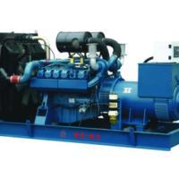 广西柴油发电机/燃煤发电机组