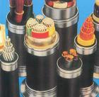 供应塑料绝缘电力电缆VV,VV22,YJV,YJV22