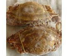 青岛冷冻海鲜冷冻蟹类进口清关代理公司