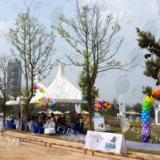 供应气球派对/活动装饰/气球装饰布置/气球放飞仪式/气球背景
