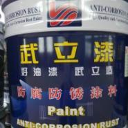武汉环氧磷酸锌防锈底漆图片
