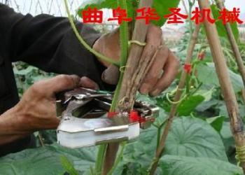 园林五金工具绑枝机图片