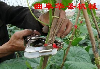�9���yi*�ja_南通园林工具簓图片_南通园林工具簓图片大全_南通簓