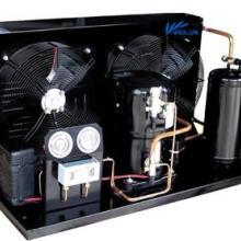 供应制冷设备专家