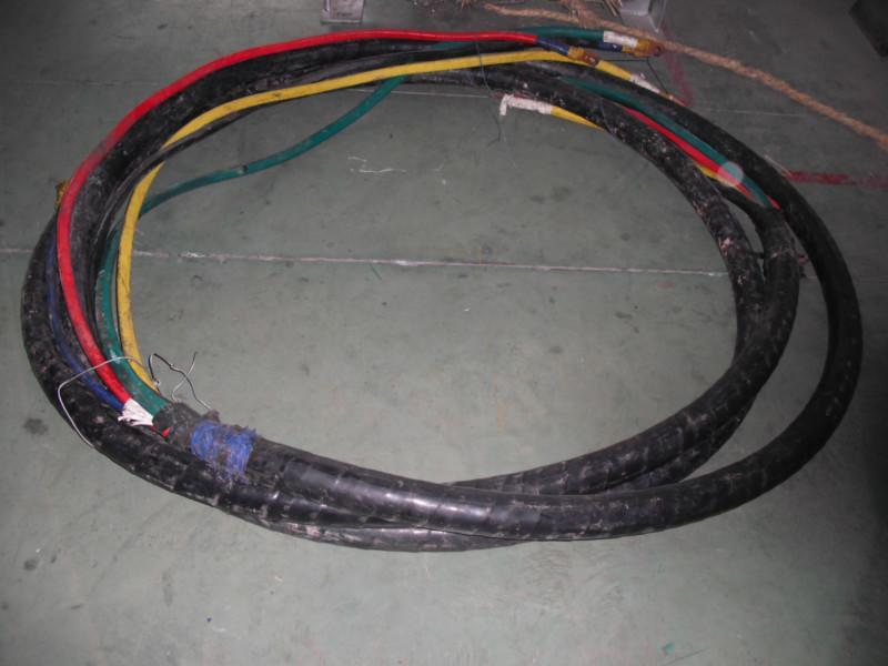 燃气发电机图片/燃气发电机样板图 (4)