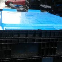 供应塑料卡板箱 大型卡板箱 箱式托盘 封闭卡板箱图片
