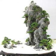 上海浦东新区哪里有山水盆景卖图片
