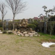 上海假山厂家供应图片