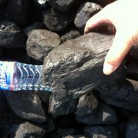 各种煤炭煤制品洗煤粉煤烟煤