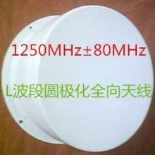 L波段圆极化全向天线 卫星接收/短距离电视信号传输