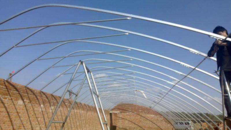 供应钢架温室大棚造价图片
