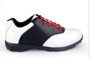 板鞋图片/板鞋样板图 (1)