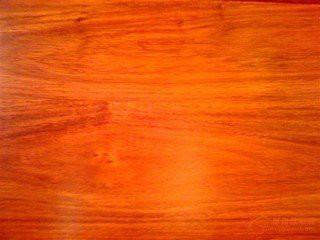 木材进口代理上海木材进口报关图片