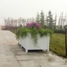 深圳防腐木花箱10年质量保证,无毒,无害,无污染,环保图片