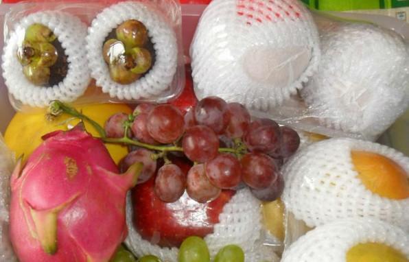 供应东莞常平水果网套生产厂家/广东水果网套生产厂家哪家好/广东水果网套批发价格