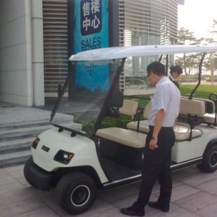 东莞电动观光车出租电话图片