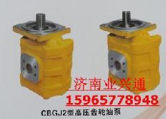 供应济南齿轮泵 济南齿轮泵高压泵批发