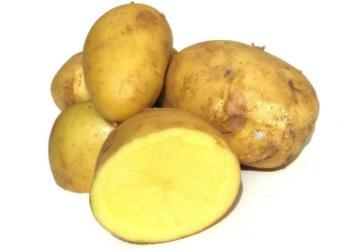 供应早大白早熟马铃薯种薯 脱毒土豆种子价格图片大全图片