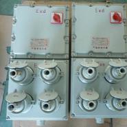BXX51防爆检修电源箱图片