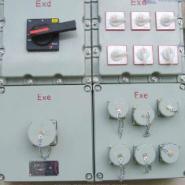 防爆配电箱 防爆检修电源插座箱图片