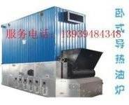 燃煤有机热体锅炉燃油燃气导热油炉图片