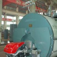 江苏燃气燃油锅炉图片