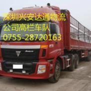 惠州到汕尾家禽动物物流运输图片