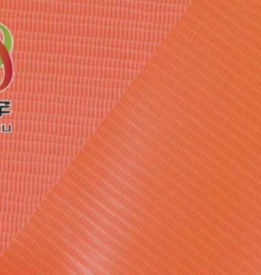 PVC荧光布反光布图片/PVC荧光布反光布样板图 (1)