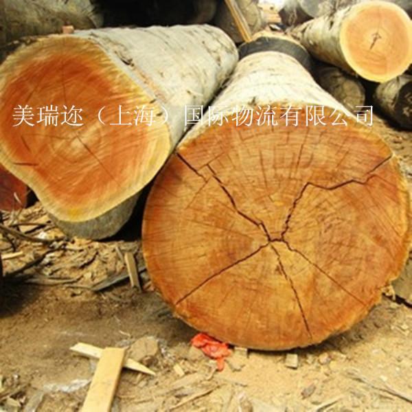 供应进口木材代理图片
