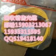 FC-FC3米10米光纤跳线图片