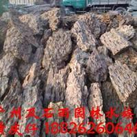 水族造景石松皮石