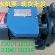 供应木川cm-100离心泵 CM-100冷水机泵现货批发