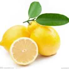 柠檬批发 广西柠檬生产基地 柠檬价格 柠檬供应商 广西柠檬直销