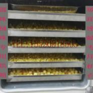 数显带定时琥珀烤色箱图片