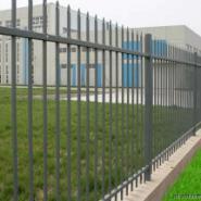 铁艺护栏网图片