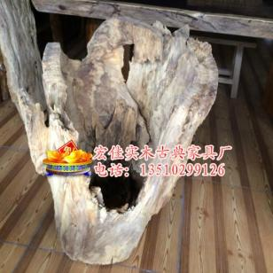百年风化木老香樟木树根图片